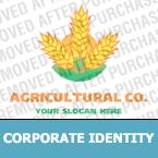 Corporate Identity Template #13787