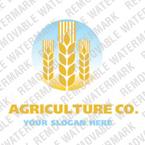 Logo Template #14386