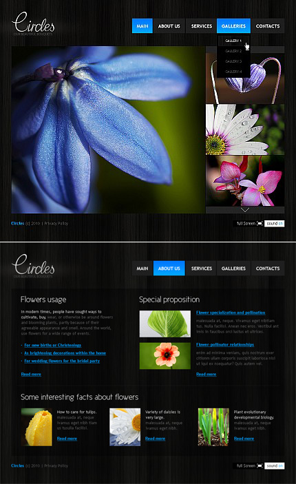 Flowers Dynamic Flash Premium Templates XML Flash Site Wide Templates website inspirations at your coffee break? Browse for more Flash CMS Template #templates! // Regular price: $99 // Sources available:.SWF, .FLA, .XFL #Flowers #Dynamic Flash #Premium Templates #XML Flash Site #Wide Templates #Flash CMS Template