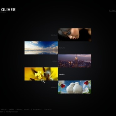 Photo Gallery Template # 32617