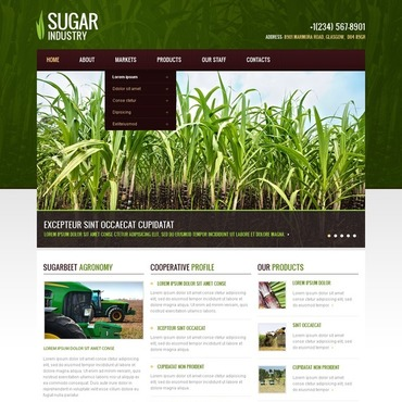 Website Template # 40104