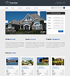 PRO Website Template #40107