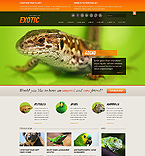 PRO Website Template #40510