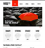 PRO Website Template #40593