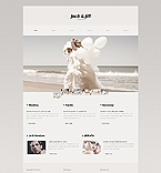 PRO Website Template #41010