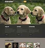 Moto CMS HTML Template #41601