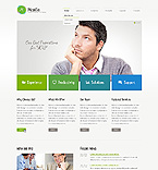 PRO Website Template #42378