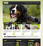 Bootstrap Template #42975