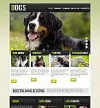 Moto CMS HTML Template #43822