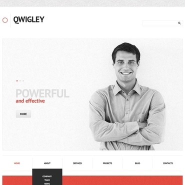 WordPress Theme # 44526