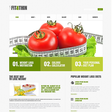 WordPress Theme # 45516
