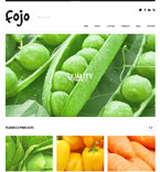 WordPress Template #46782