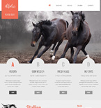 Bootstrap Template #46921