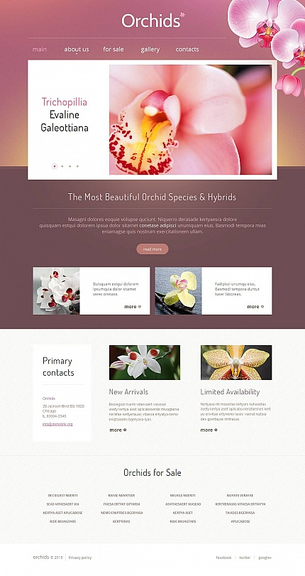 Flowers website inspirations at your coffee break? Browse for more Moto CMS HTML #templates! // Regular price: $139 // Sources available:<b>Sources Not Included</b> #Flowers #Moto CMS HTML