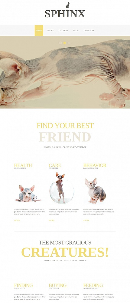 Animals &amp; Pets website inspirations at your coffee break? Browse for more Moto CMS HTML #templates! // Regular price: $139 // Sources available:<b>Sources Not Included</b> #Animals &amp; Pets #Moto CMS HTML