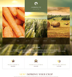 Bootstrap Template #47428