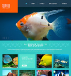 Bootstrap Template #47484