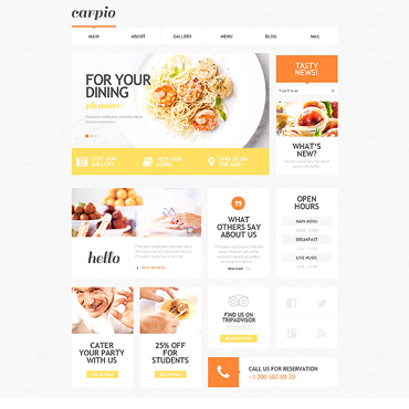 WordPress Theme # 47527