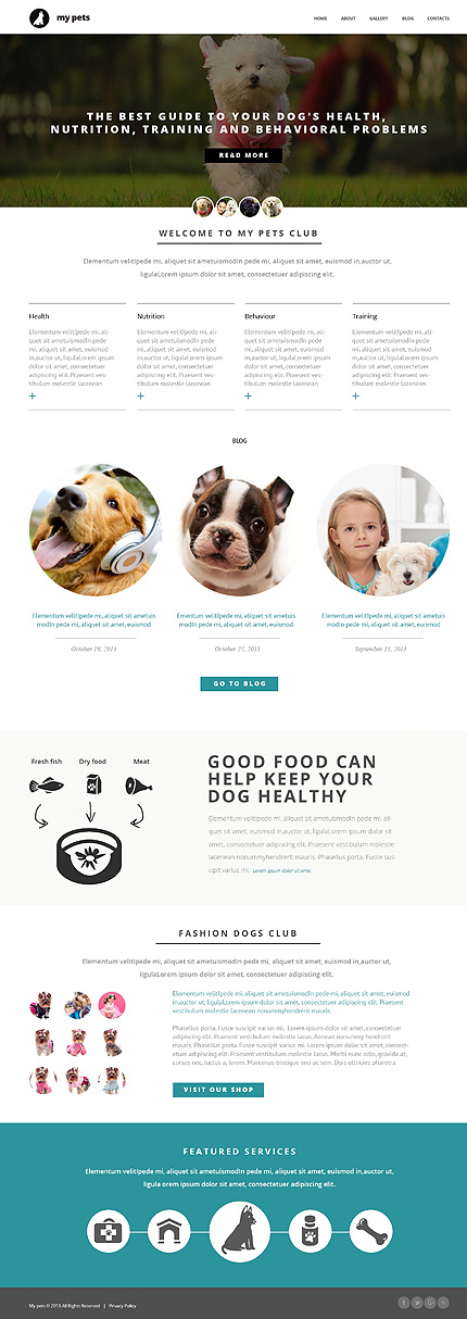 Animals & Pets Most Popular website inspirations at your coffee break? Browse for more Bootstrap #templates! // Regular price: $75 // Sources available: .HTML,  .PSD #Animals & Pets #Most Popular #Bootstrap