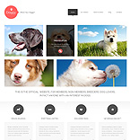 WordPress Template #47998