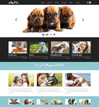 Bootstrap Template #48812