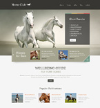 WordPress Template #49010