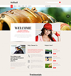 WordPress Template #49226