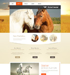 Bootstrap Template #49490