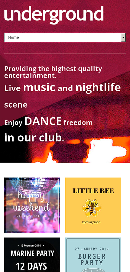 Night Club website inspirations at your coffee break? Browse for more Drupal #templates! // Regular price: $75 // Sources available: .PSD, .PHP #Night Club #Drupal