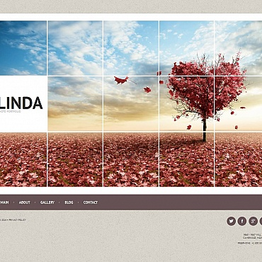 Photo Gallery Template # 51721