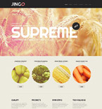 WordPress Template #52086