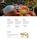 Bootstrap Template #52491