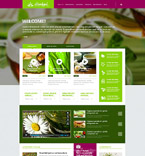 WordPress Template #54728