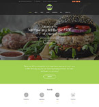 WordPress Template #55033