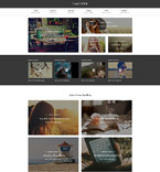 Responsive JavaScript Animated Template #55796