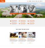Responsive JavaScript Animated Template #56031