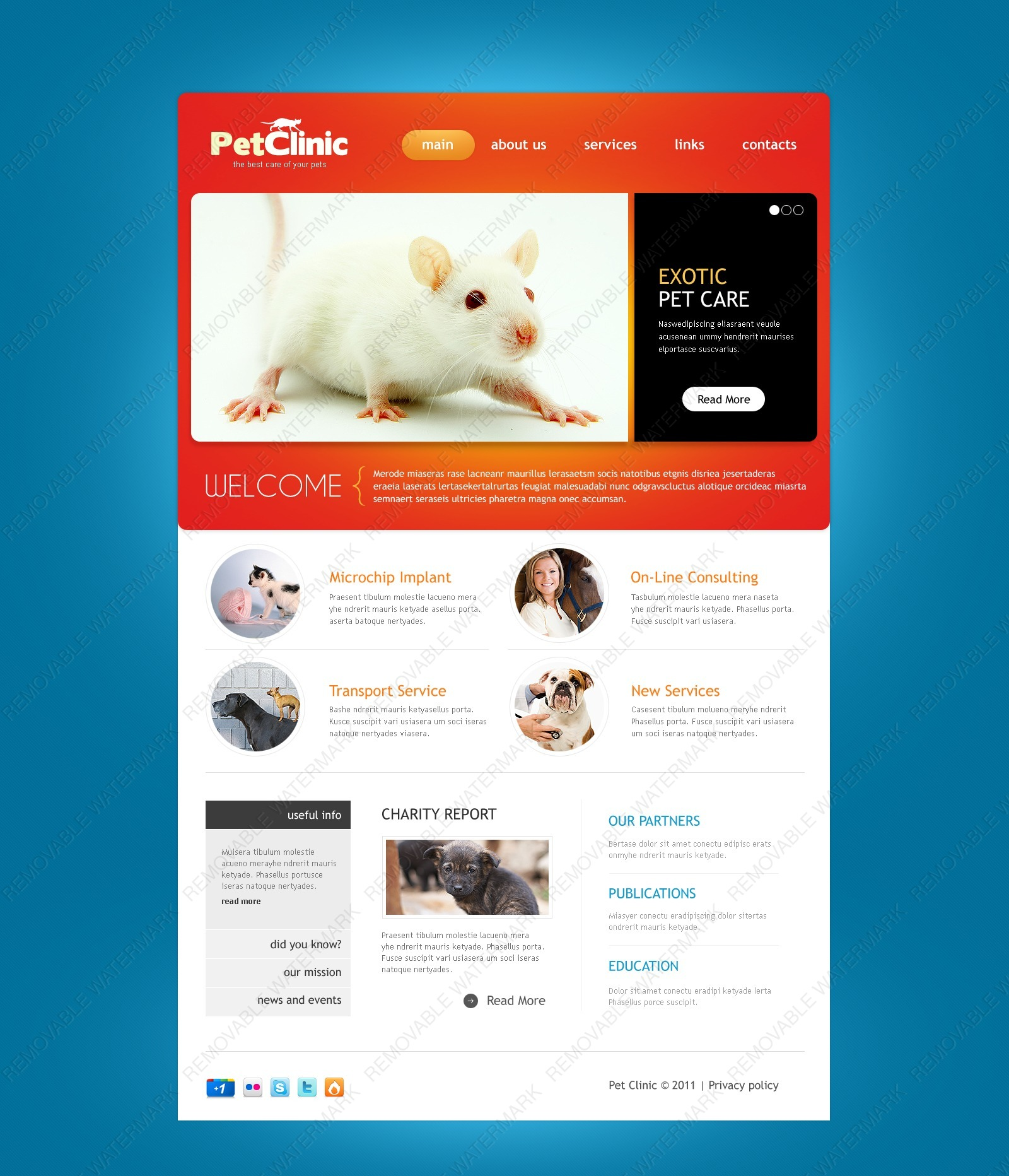 Template 57102 Live demo - Pet Clinic PSD Template