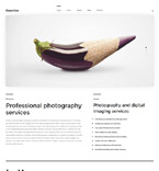 WordPress Template #57554