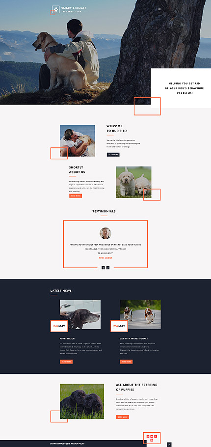Animals & Pets website inspirations at your coffee break? Browse for more Responsive JavaScript Animated #templates! // Regular price: $69 // Sources available: .HTML,  .PSD #Animals & Pets #Responsive JavaScript Animated