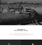 WordPress Template #57875