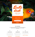 Exotic Birds Landing Page Template