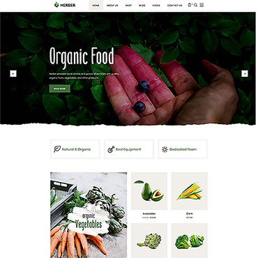 Website Template # 58411