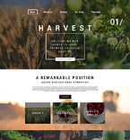 WordPress Template #59096