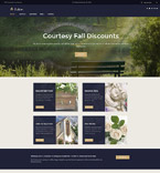 WordPress Template #62025