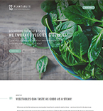 WordPress Template #64052
