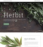 WordPress Template #64148