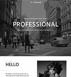 WordPress Template #64520