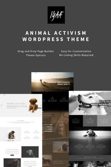 Animals & Pets Most Popular website inspirations at your coffee break? Browse for more Vendors #templates! // Regular price: $75 // Sources available: #Animals & Pets #Most Popular #Vendors