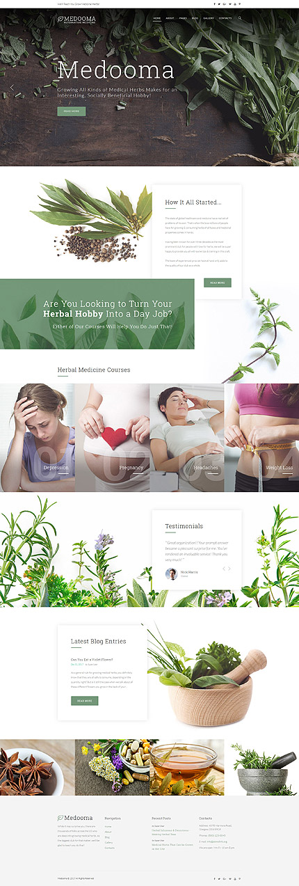 Alternative Medicine Joomla Template