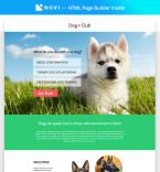 Template 68447 Landing Page Templates